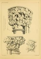 Details of Gothic Ornament measured and drawn by James K Colling by  Colling James K.