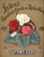 Sutton's Amateur's Guide in Horticulture for 1891 by SUTTON SEEDS