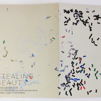 Stealing Beauty: British Design Now by [ICA]