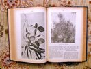 Another image of 1930 TREES of CHILE Fully ILLUSTRATED Descriptive Book ARBOLES DE CHILE by Izquierdo S. Salvador