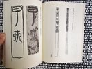 Another image of CHINESE BAMBOO CALLIGRAPHY STRIPS Ancient Texts Written on Wood Slips ILLUSTRATED Scholarly Study