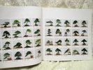 Another image of BONSAI TREES & ELEGANT ROCKS ILLUSTRATED with 269 Full Page PHOTOGRAPHIC PLATES Nantou Festival, TAIWAN