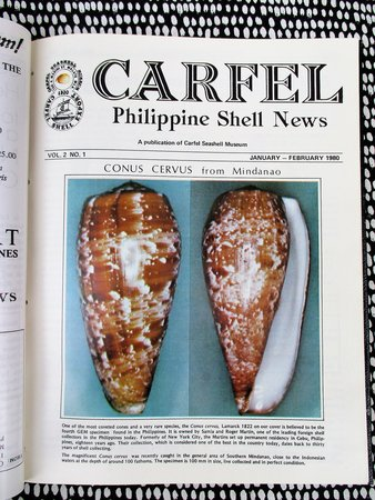 Seashells - 24 ISSUES of CARFEL : PHILIPPINE SEA SHELL NEWS Illustrated SEASHELLS Philippines