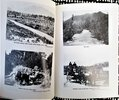 Another image of RAI VALLEY, NEW ZEALAND Centennial History 1881-1981 ILLUSTRATED by Rai Valley Centennial Committee
