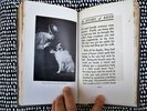 Another image of 1912 STORY OF SHEP (the Family DOG) by BERTHA E. JAQUES Noted Chicago Etcher & Photographer **SIGNED & INSCRIBED** by Bertha E. Jaques