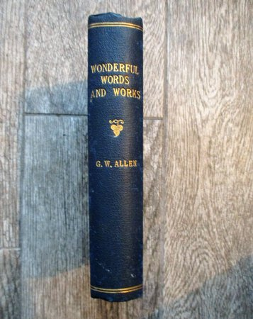 1903 SERMONS by REV. GEORGE W. ALLEN - MYSTICAL ESOTERIC DREAM-STATE CHRISTIAN by Reverend George W. Allen