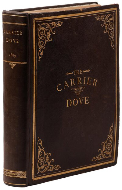 1889 CARRIER DOVE - OCCULT SPIRITUALIST MYSTICAL FEMINIST REFORM Weekly 52 ISSUES Published in San Francisco by Julia Schlesinger, editor and publisher