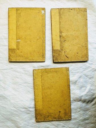 1873 THREE JAPANESE ILLUSTRATED WOODBLOCK PRINTED BOOKS on SILK PRODUCTION / SERICULTURE by Sakai Yoshitane